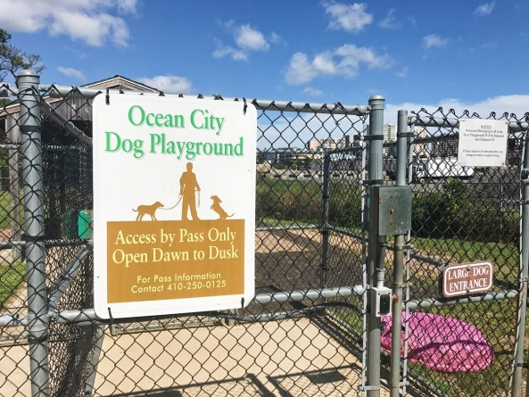 Ocean City Dog Playground