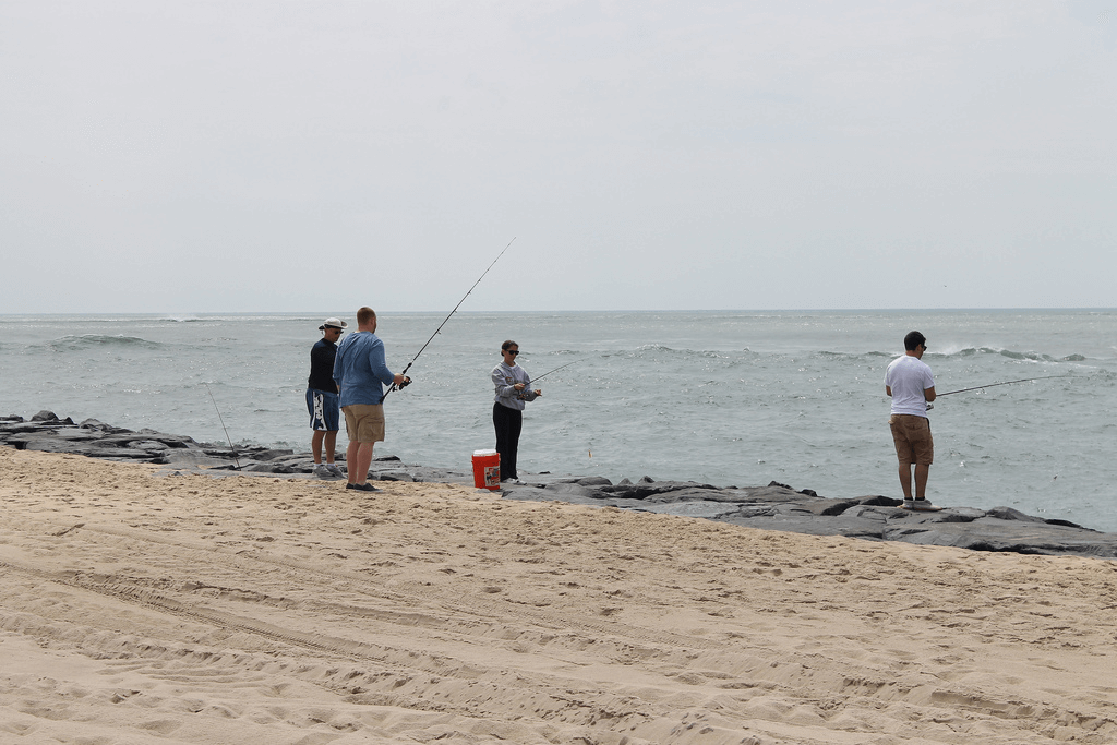Assateague for Ocean city maryland fishing