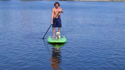 Flat wave forecast – Time to paddleboard