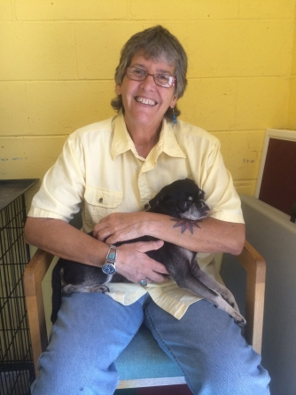 Worcester County Humane Soc. sees 'amazing strides'
