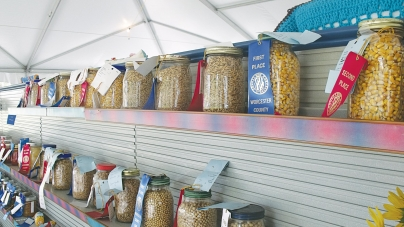 Annual Worcester County Fair this wknd. in Snow Hill