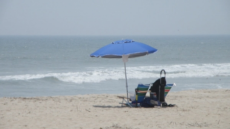 6 ways to get the most out of driving on the Assateague Island Beach