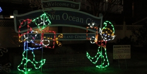 Some holiday lights you won't find at Winterfest